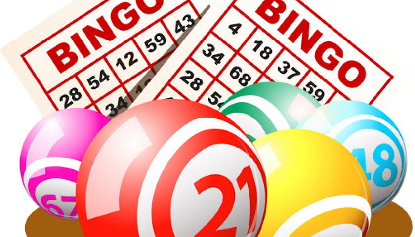 Bingo Popularity Increasing