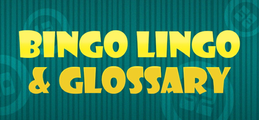 Bingo Lingo and Glossary Guide